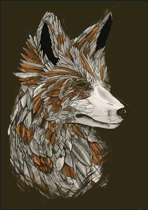 Feathered fox black - plakat wymiar do wyboru: 40x50 cm