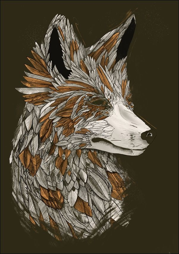 Feathered fox black - plakat wymiar do wyboru: 40x60 cm