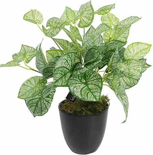 Leaf 40 cm sztuczna roślina kaladium z doniczką