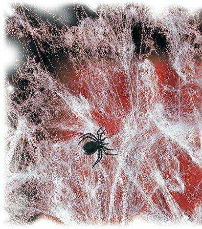 Sieć pajęcza z 2 pająkami - Pajęczyna Halloween - 60 g.