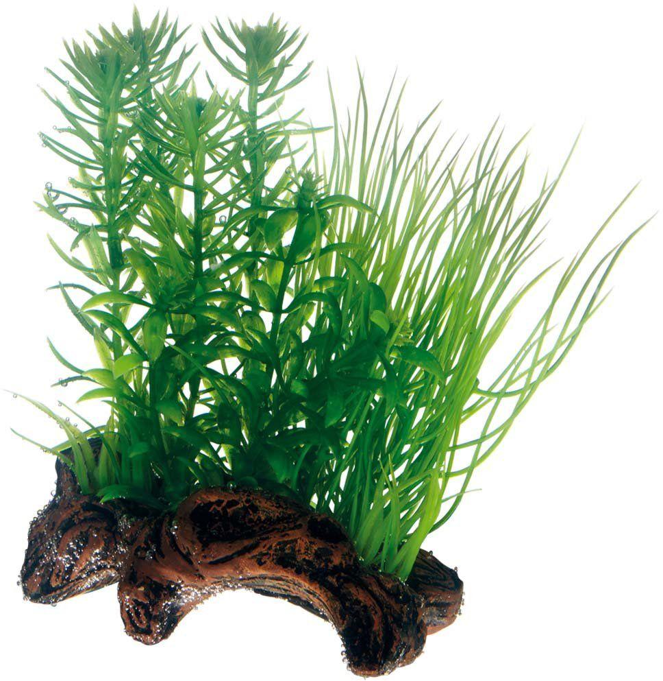 Hobby 51595 Flora Root 2, imitacja korzeni, ze sztucznymi roślinami, S