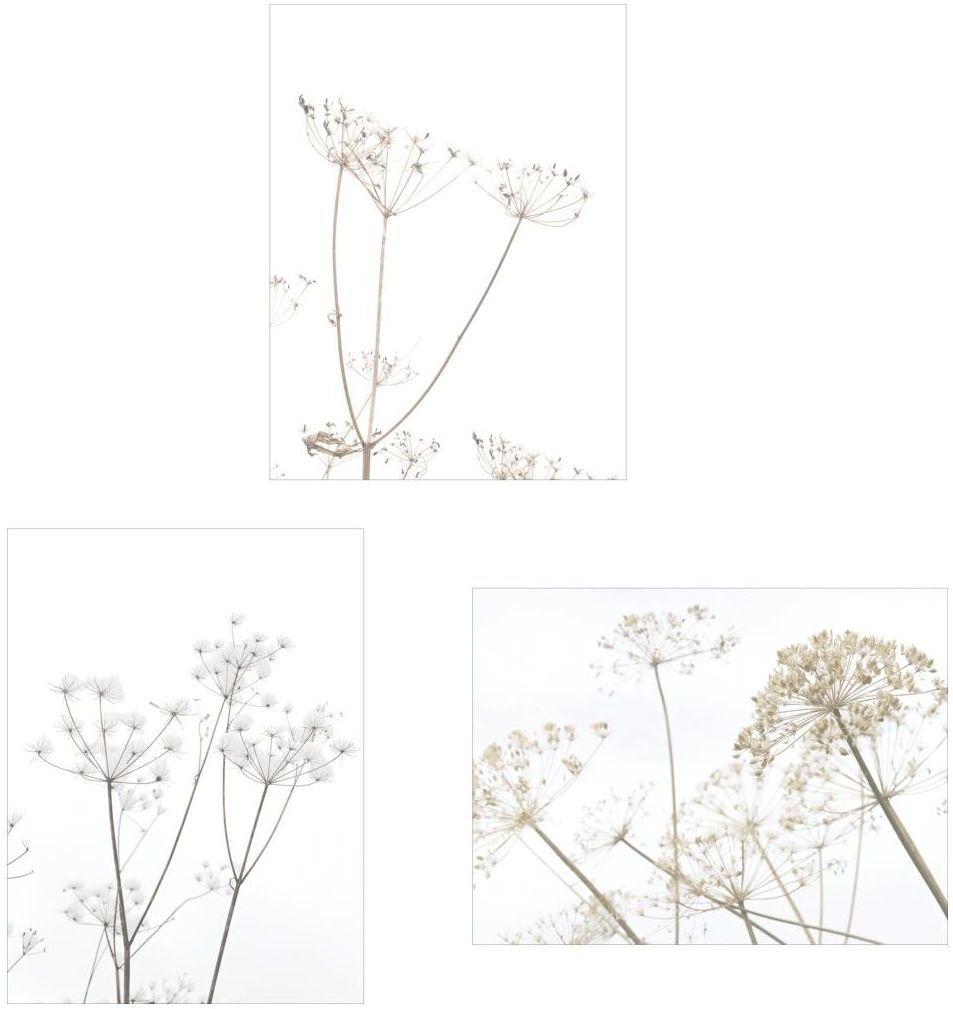 Zestaw 3 plakatów Kwiaty Polne 30 x 40 cm