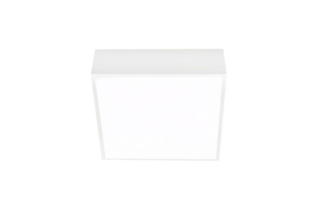Oprawa sufitowa FALCO 12 AZ2781 - Azzardo - Sprawdź kupon rabatowy w koszyku