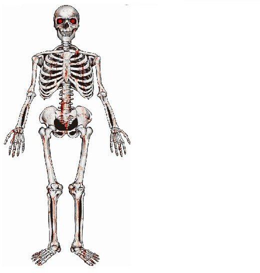 Dekoracja na Halloween Szkielet Kościotrup 135x42cm 1 sztuka PF-DWSZ