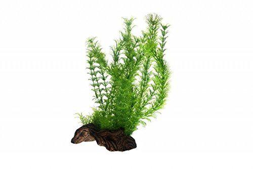 Hobby 51598 Flora Root 3, L, imitacja korzeni za pomocą sztucznych roślin