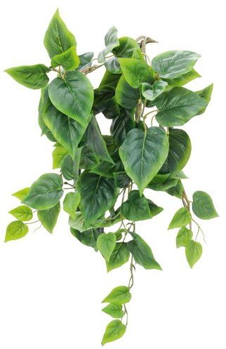 Euro Palms sztuczna roślina, zielona