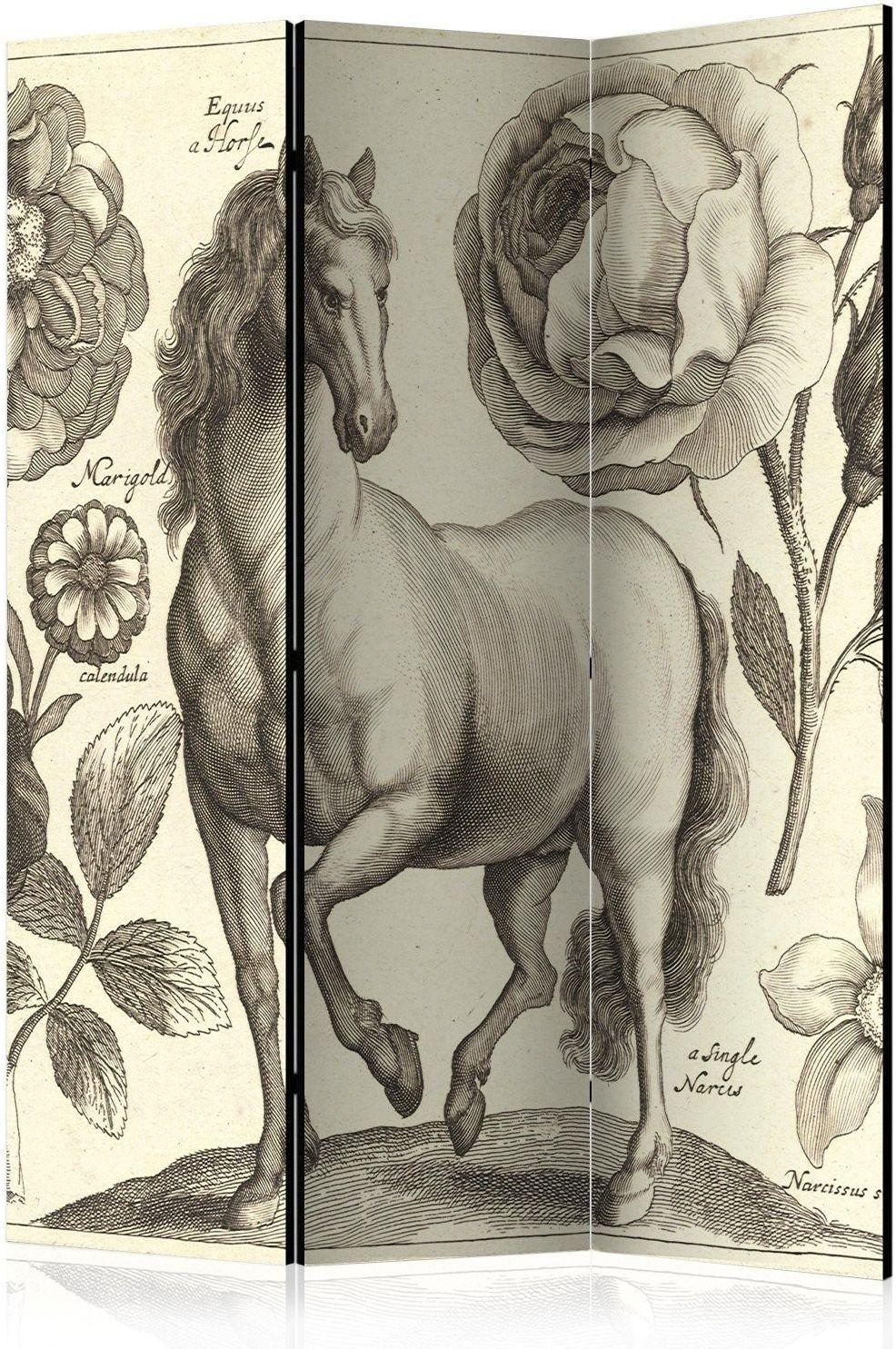 Parawan 3-częściowy - koń [room dividers]