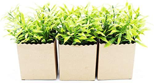 Heitmann Deco, sztuczne rośliny w papierowej doniczce, z diodą LED, zestaw 3 szt, zielony, brązowy, 7x6x14,5 cm