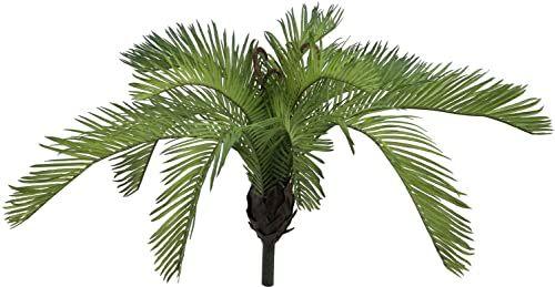 EUROPALMS Cycasfarn, sztuczna roślina, 50 cm Cyklus do dekoracji wewnątrz i na zewnątrz