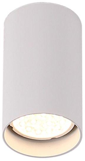 WYSYŁKA 24H Plafon Pet Round New C0141 Maxlight biała oprawa sufitowa