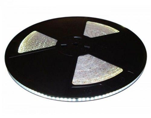 Taśma LED 600SMD2835 biała zimna IP20 - 1m.