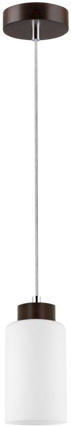 SPOT LIGHT LAMPA ZWIS BOSCO 1720176