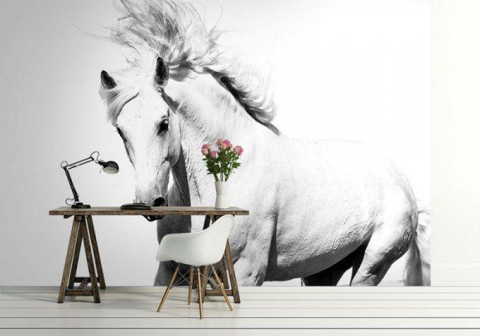 Fototapeta na ścianę - Arabski Koń - KLEJ GRATIS!